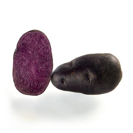 semence de pomme de terre gaiane