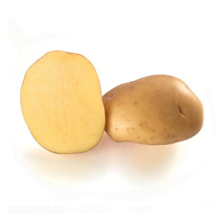 semence de pomme de terre atlas